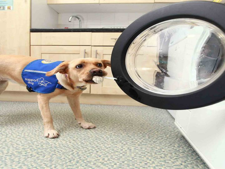 Design for assisted living; the 'woof to wash' washing machine